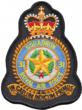 No. 31 Squadron Royal Air Force RAF Crest MOD Embroidered Patch